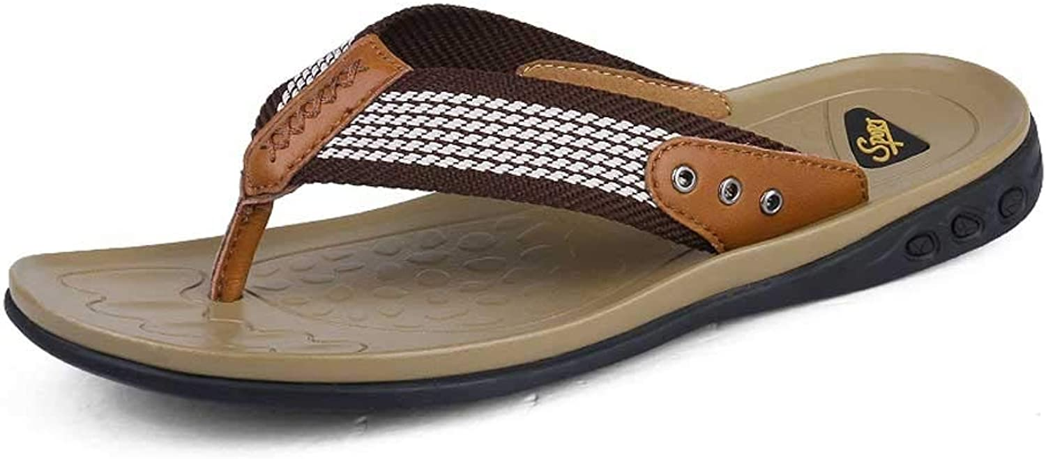 AUGAUST Men's Flip Flops Thongs Comfy Beach Pool Lightweight Summer Ribbon Upper Is Comfortable and Breathable (color   C, Size   47)