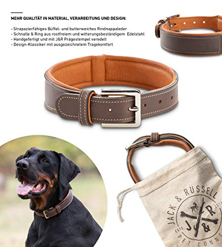 Jack & Russell Premium Hunde Leder Halsband Amy - Lederhalsband aus Echtleder mit Original J&R Prägestempel - robust & elegant Amy (XS)
