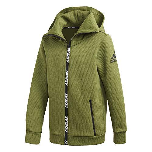 adidas Yb Tr Warm Hd Sweatshirt Unisex Kinder L Grün / Weiß (olitec/Blanco)