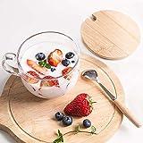 Glass Cup 15oz Heat-resistant Clear Coffee Mug with Lids Spoon for Breakfast Tea,Milk,Beverage,Oats,yoghurt