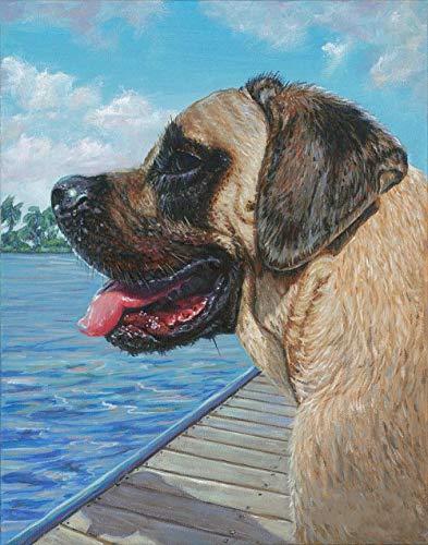 Mastiff Pet Dog Diy Pintura Por Números Para Adultos Y Niños Manualidades Para Decoración De La Pared Del Hogar - 16 X 20 Pulgadas (Sin Marco)