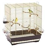 Imac - Jaula de carluta para canarios, cocoritis y pájaros exóticos oro marrón