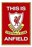 Poster Liverpool FC This is Anfield Eiche, gerahmt,