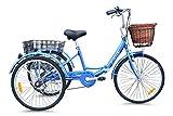 JORVIK 24 Dutch Style Aluminum Folding Tricycle Trike Trike (Blue Dutch)