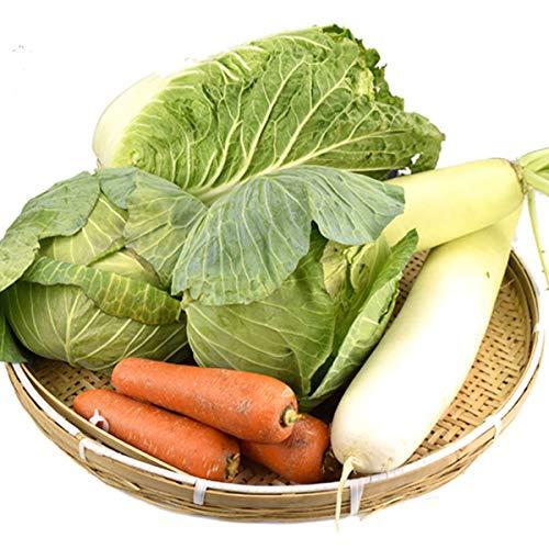 国華園 国産 重量野菜セット 4種1箱 白菜 大根 キャベツ にんじん 野菜詰め合わせ 自宅へお届け 冷蔵