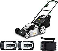 wangzi Electric Rotary Lawn Mower Mower Rechargeable Electric Lawn Mower 40V / 4.0Ah Lithium Battery Cutting Width: 457mm ...