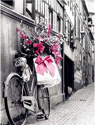 DIY 5D adultos y niños Diamante Pintura Kits BicicletaCompleto BordadoPuntoCraft Decoración del hogarCristal Full Diamond Rhinestone Pintura rtesanía decoración_20x30cm