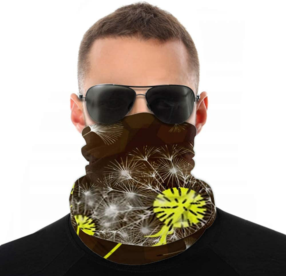 Headbands For Men Women Neck Gaiter, Face Mask, Headband, Scarf Abstract Background Dandelion Design Wind Blows Turban Multi Scarf Double Sided Print Head Wrap For Sport Outdoor