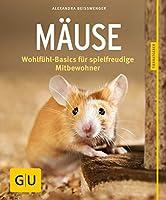 Maeuse: Wohlfuehl-Basics fuer spielfreudige Mitbewohner