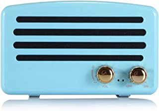 Wireless Bluetooth Retro Speaker with FM Radio, Portable Vintage Speaker, Amazon Alexa Support, Built-in Mic for Hands-Free Calls, 7-8 Hrs Playtime, TF Card, Aux Support for iOS/Android, Sky Blue