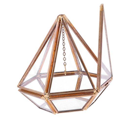 Sharplace Terrarium Géométrique en Verre Transparent et Alliage Cuivre Doré Exposition Bijoux Plantes