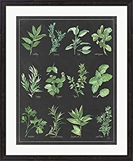 Herb Chart on Black White Border by Chris Paschke Framed Art Print Wall Picture, Espresso Brown Frame, 29 x 35 inches