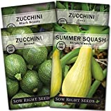 Sow Right Seeds - Zucchini Squash Seed Collection for Planting - Black...