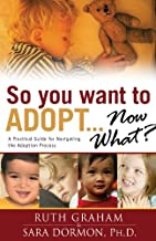 So You Want to Adopt... Now What?: A Practical Guide for Navigating the Adoption Process