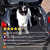 Zoom IMG-2 toozey telo auto per cani