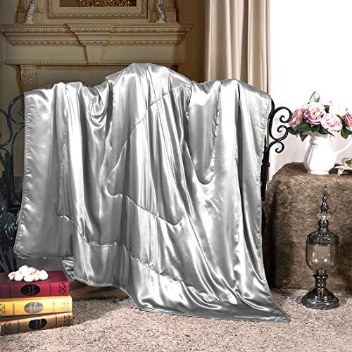 Cozysilk Pure Silk Throw Blanket...