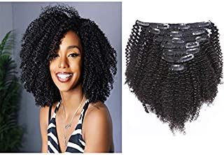 natural hair clip ins 4b
