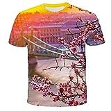 Camisetas Hombre,Camisa De Manga Corta Suelta con Imagen De Paisaje De Impresión Digital 3D Superior De Pareja De Verano-M