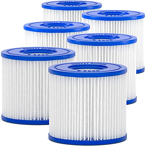 SUNSET FILTERS Type D Pool Filter Replacement Cartridge (6-Pack)...
