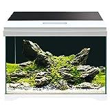 AMTRA MODERN TANK 40 LED / Acquario completo di illuminazione LED e filtro interno / cm 42,5x23,5x36,5 / 28 Litri