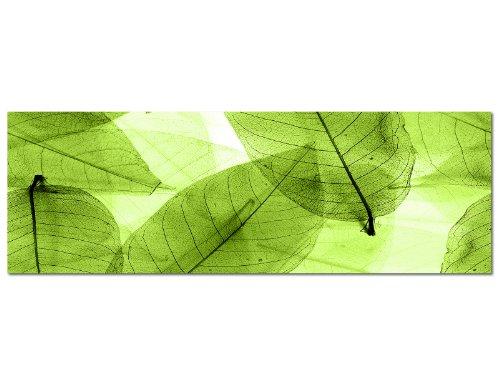 Panoramabild auf Leinwand und Keilrahmen 120x40cm Blätter Silhouette Hintergrund grün