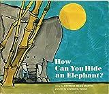 How can you hide an elephant? (A Magic circle book)