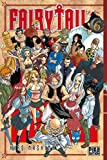 Fairy Tail - Tome 6 - Pika - 06/05/2009