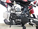 RV-Parts KXD Dirt Bike 125ccm 17/14 Zoll Cross Vollcross Pocketbike Pit Enduro 125cc 12PS - 5