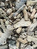 pH triturado 1kg de los medios de filtro del esqueleto del arrecife marino de los medios filtrantes del búfer de los medios de filtro del coral