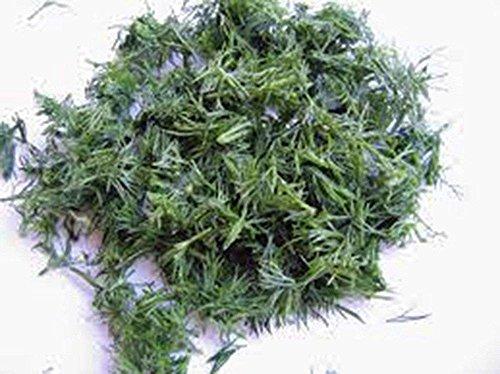 Semilla de eneldo, Bouquet, herencia, orgánico, no gmo, 100 semillas, hierbas frescas...