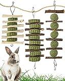 Woiworco 3 Piezas de Juguetes para Masticar Conejo, palitos de Manzana de Madera orgánica Hechos a Mano Naturales y Bolas de heno Timothy