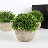 Zoom IMG-1 gomaihe 3 pezzi piante artificiali