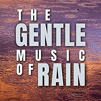 The Gentle Music of Rain