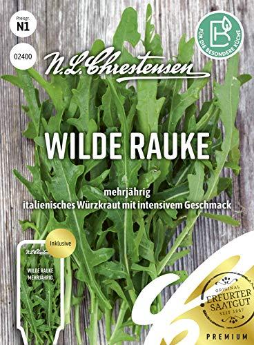 Wilde Rauke, mehrjährig, Samen