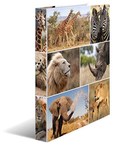 HERMA 19476 Ringbuch DIN A4 Afrika Tiere, 2 Ringe, 35 mm breit, schmaler bedruckter Motiv Ringbuchordner aus stabilem Karton, 1 Ringbuchmappe