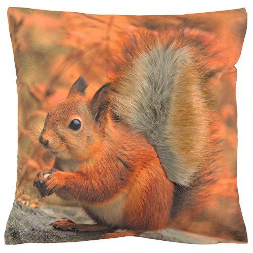 Espamira Kissenhülle Eichhörnchen 40x40 cm Kissenbezug Plüschbesatz Kissen Herbst Dekokissen Kuschelkissen Tiermotive