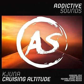 Cruising Altitude