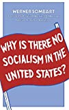 Why is There No Socialism In the United States