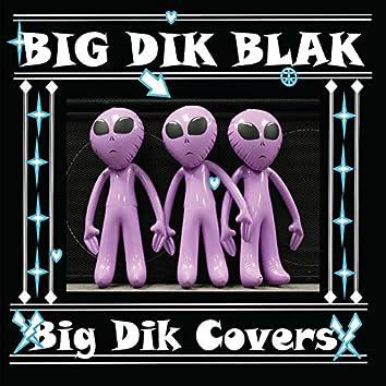 Big Dik Covers