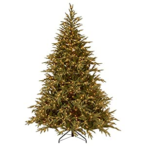 National Tree Company 'Feel Real' Pre-lit Artificial Christmas Tree | Includes Pre-strung White Lights and Stand | Frasier Grande – 9 ft