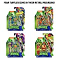 Rise of the Teenage Mutant Ninja Turtles Basic Figure