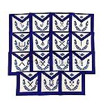 Générique Maçonnique Bleu Lodge Officiers 15 Tablier Machine Brodé Tablier Ensemble MS023