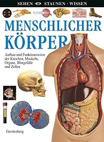 Menschlicher Körper: Aufbau und Funktionsweise der Knochen, Muskeln, Organe, Blutgefäße und Zellen (Sehen - Staunen - Wissen)