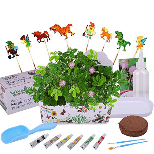Blooming Toys Paint Your Planter - Magical Moving Garden Kit. Art& Craft Educational Kids Birthday Gift - Ages 6 7 8 9 10. Fairy, Unicorn, Dinosaur, Leprechaun Pawns. Grow The Sensitive Plant Flower