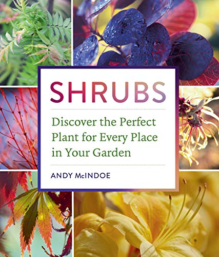 Compare Textbook Prices for Shrubs: Discover the Perfect Plant for Every Place in Your Garden Illustrated Edition ISBN 9781604697674 by McIndoe, Andy