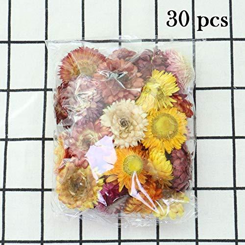 XUENING JWGD 30pcs hochwertige natürliche Bunte Chrysantheme getrocknete Blumenköpfe Hochzeit Blume MITTELSTÜCK- Blume Trockene konservierte Blume (Farbe : A, Größe : 20g)