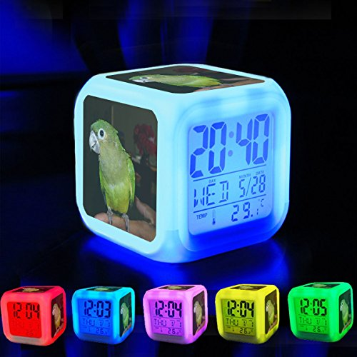 Reloj despertador 7 luces LED que cambian de Color Wake Up recámara con datos y visualización de temperatura (color cambiable) personalizar el pattern-224.Aratinga Pertinax (Juvenile) – panama-8 a-3 °C