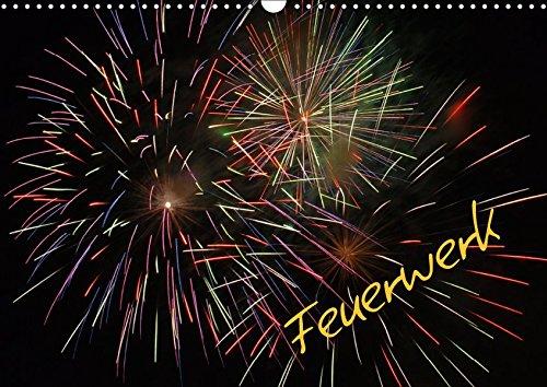 Feuerwerk (Wandkalender 2019 DIN A3 quer): Hell, Laut, Bunt, ein Feuerwerk halt (Monatskalender, 14 Seiten ) (CALVENDO Spass)