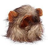 Pzpgeq Divertido Lindo Disfraz De Gato Mascota LeóN Melena Peluca Sombrero Gato Y Perro Halloween Navidad Ropa Vestido Elegante con Orejas Ropa para Mascotas-A