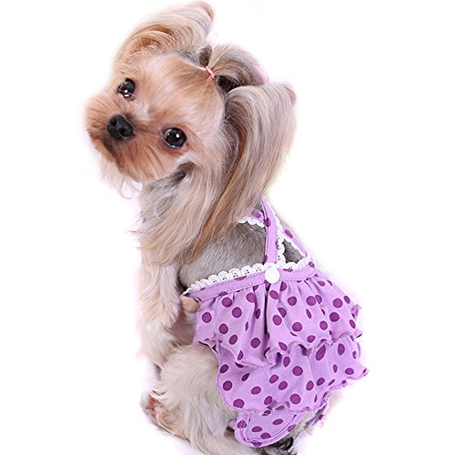 Alfie Pet - Frona Diaper Dog Sanitary Pantie with Suspender for Girl Dogs - Color: Purple, Size: Medium